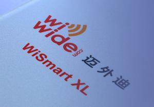WiWide-logo