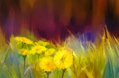 46034718 - oil painting nature grass flowers. hand paint close up yellow dandelions, pastel floral and shallow depth of field. blurred nature background. spring flowers nature background