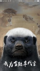 """""""I believe in Quannengche"""" proclaims a skunk on the load screen for the controversial Quannengche app"""