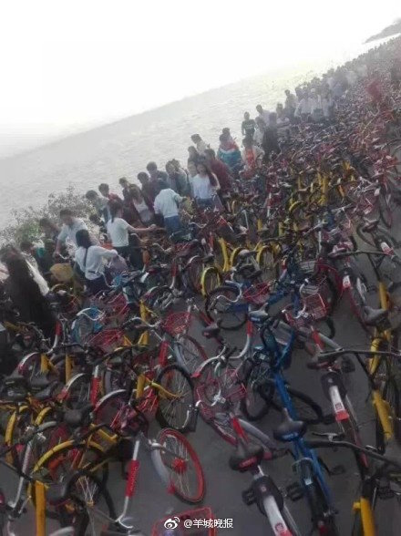 shenzhen_bikes4