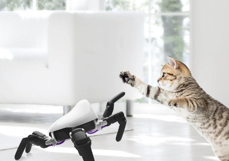 HEXAs can even capture kitten high-fives on video (Image credit: Vincross)