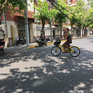 I ride Mobike or Ofo bike all the time, and now they are spread out in major cities in China (Image Credit: TechNode)